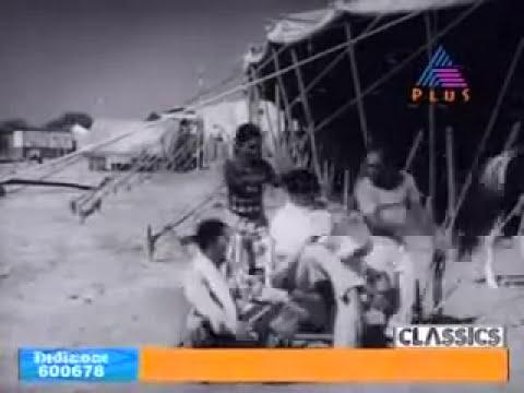 Kathu Sookshichoru Kasthoori mambazham   / Malayalam song