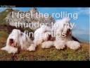 Youre My Everything - Santa Esmeralda - Music Video