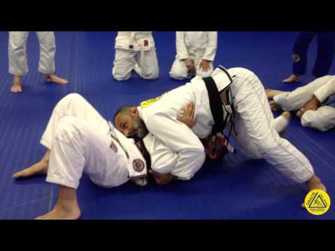 North-South transition to Armbar Image 1