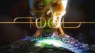 Fear Inoculum Reaction After 13 Years Waiting - Tool Fan's First Listen