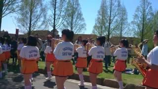 京都橘高校吹奏楽部 2017 ブルーメンパレード 午後の部 3 Kyoto Tachibana Shs Band