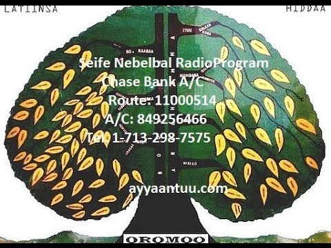 Seife Nebelbal Radio Interviews Saudi Arabia Oromo Immigrants