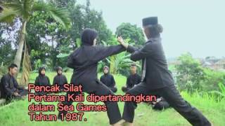 Silat Cimande, Salah Satu Aliran Pencak Silat Tertua di Indonesia