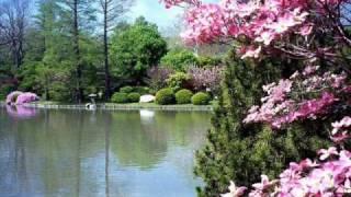 قطوف من حدائق الايمان 12