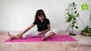 Yoga para principiantes clase 11