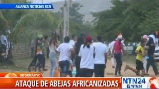 Ataque de abejas interrumpió discurso del expresidente Álvaro Uribe Vélez