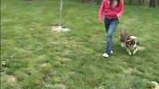 Breeze & Hannah- Lesson: Child Walking the Dog