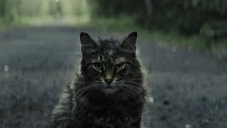 Pet Sematary 2019 remake review