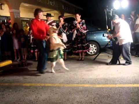 El verdadero Baile del Perrito