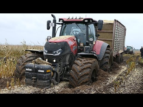 Case IH 300 Optum Gets Totally Stuck in The Mud During Maize / Corn Chopping | Häckseln 2017