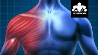 Боль в мышцах и результаты | Антон Кучумов | 100-дневный воркаут - День 33