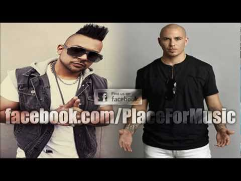 Sean Paul feat. Pitbull - She Doesn't Mind (Official Remix) mp3 indir