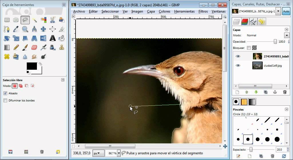 Tutorial gimp espa ol editar imagenes hacer fotomontajes - Para disenar fotos ...