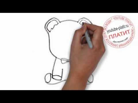 Видео как нарисовать медведя ребенку