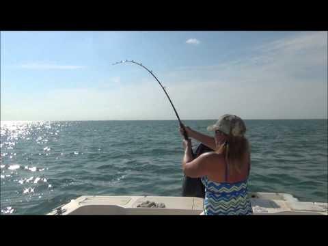 Shark Fishing at the 7 Mile Bridge, Marathon, Florida Keys