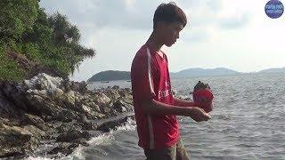 Xem Cao Thủ Ở Đảo Hoang Câu Cá/Sea fishing instructor