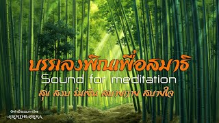 บรรเลงพิณเพื่อสมาธิ : Sound for meditation