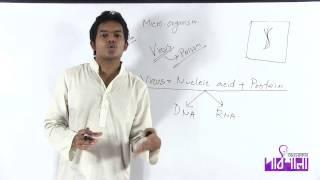 01. Introduction & Structure of Virus | ভূমিকা ও ভাইরাসের গঠন | OnnoRokom Pathshala