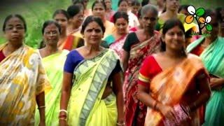 Dekho Bodley Gechhey Bangla TMC Election Song 2016