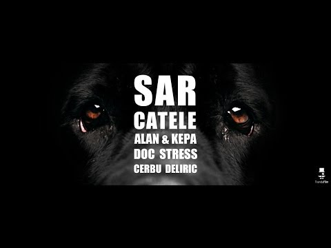 Alan & Kepa , Doc , Stress, Cerbu', Deliric - Sar Catele [Official Video]