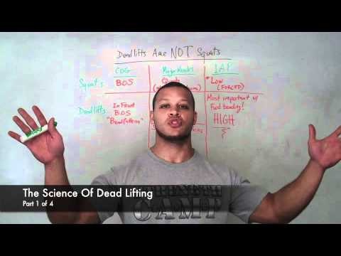 How To Deadlift (the science of dead lifting) Image 1