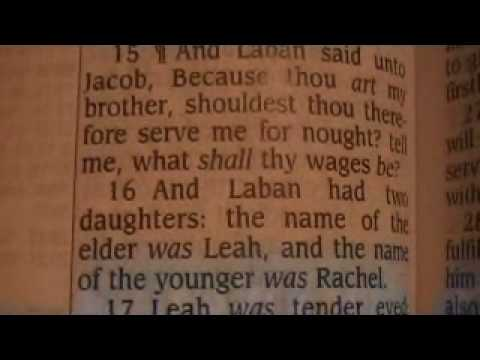 Genesis 29 Holy Bible (King James)