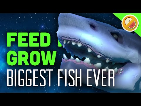 Biggest Fish Ever Feed And Grow Gameplay 1 Funny Moments