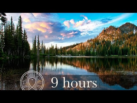 Relaxing Nature Sounds: Forest, Crickets, Lake, Rain, Thunder | for Sleeping | Reading | Work