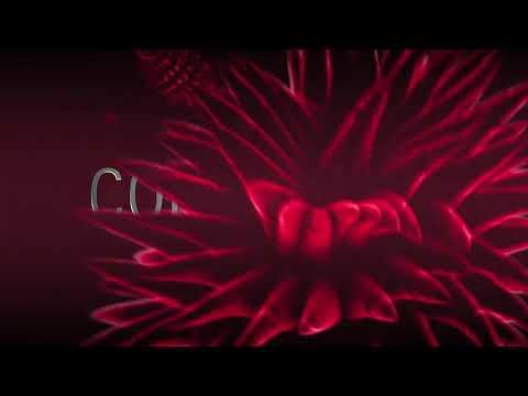 Contagion   Film Trailer   Participant Media