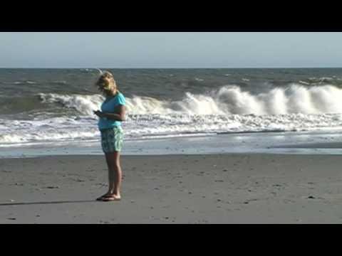 Giant great white shark myrtle beach south carolina how for Myrtle beach shark fishing