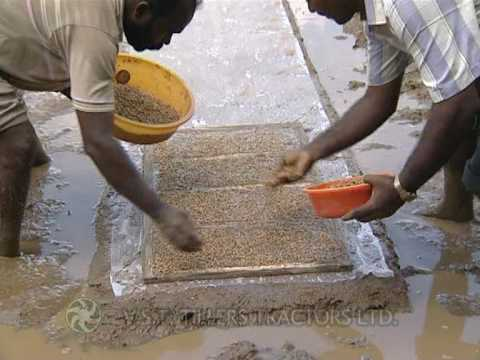 VST Shakti Rice Transplanter  - Part 1