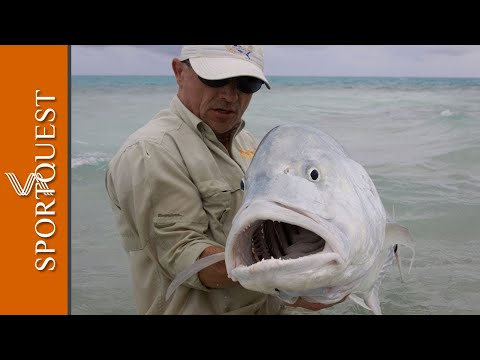 "Fly Fishing For GT s On Christmas Island ""Mind Blowing Action"""