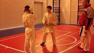 4. Karate training - 2016