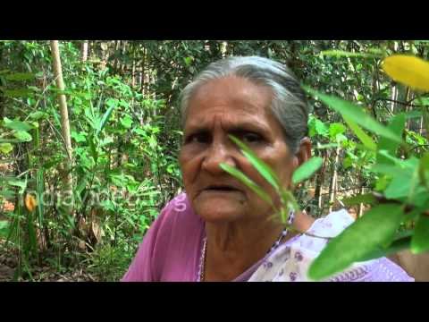 Herbal drinking water - Ramacham