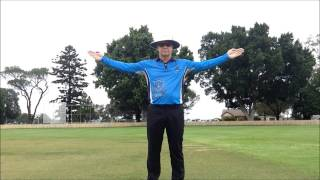 Cricket Umpire Signals - HD
