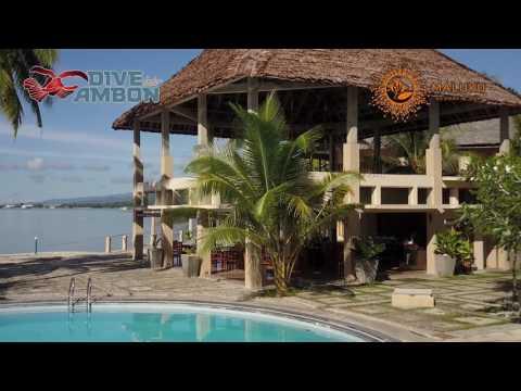 Dive Into Ambon @ Maluku Resort & Spa
