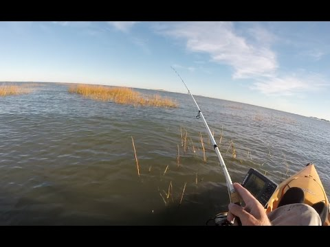 Fishing For Elusive RED DRUM of New Jersey (fail)