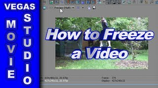 How to Freeze a Video using Sony Vegas Movie Studio HD Platinum 10 & Pro