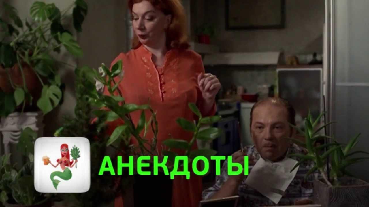 Видео Анекдоты Перец Скачать