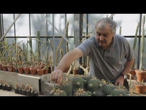 Jean-Marie Solichon : sauver le patrimoine botanique - Monaco Life Bonus