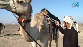 رحالة إمارتيون وعرب يستكشفون صحراء الإمارات