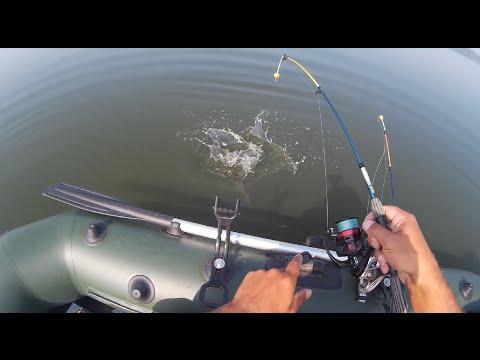 видео ловля плотвы на удочку с лодки