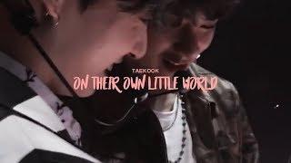 Taekook on their own little world