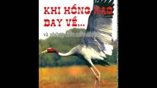 Truyện Đọc: Khi Hồng Hạc Bay Về - HT Thích Huyền Diệu