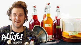 How to Brew Your Own Kombucha with Brad | It
