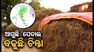 Odisha on rain alert as Pethai turns into a severe cyclonic storm