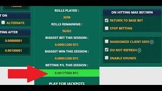 Ultimate configuration trick auto bet freebitco.in