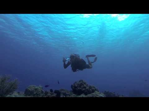 Diveversity Aruba Launch Iron Lady