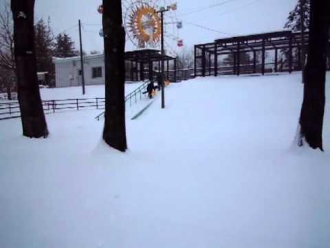 雪のおびひろ動物園