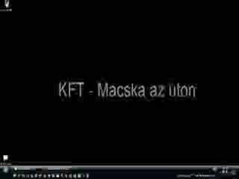 KFT - Macska Az úton